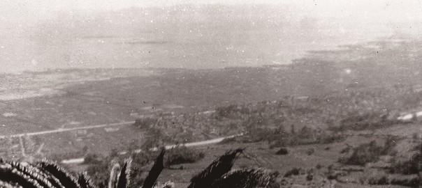 100 中城城跡から見た中城村