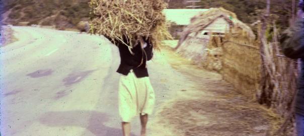 172 草を運ぶ人