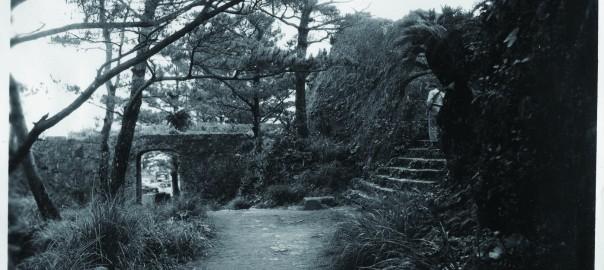 64 中城城跡 三の郭に続く階段