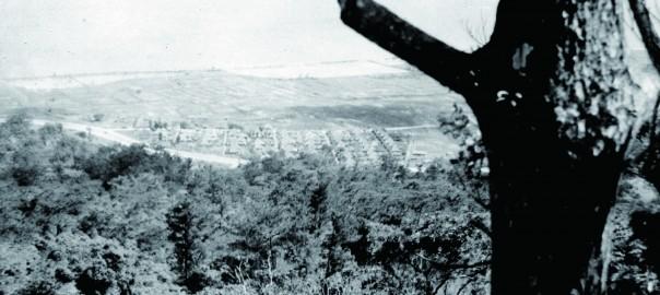 123 中城城跡より遠景