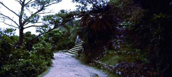 71 中城城跡 三の郭に続く階段