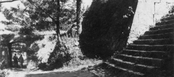 5 中城城跡 裏門と三の郭への階段