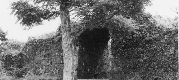 93 中城城跡 一の郭のアーチ門