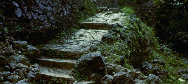 68 中城城跡 南の郭に続く階段