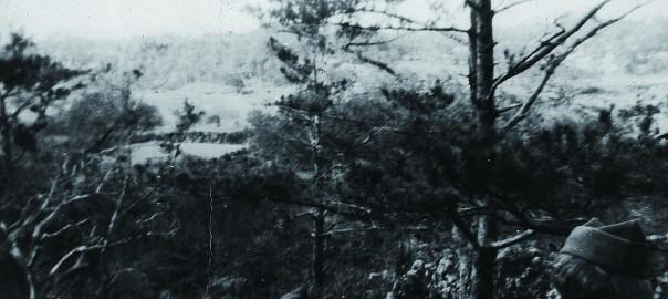 17 中城城跡 二の郭から見た風景