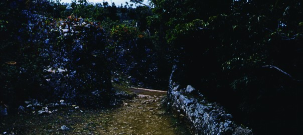 82 中城城跡 南の郭